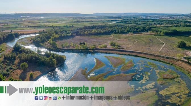 """Se inicia la restauración ambiental en el paraje """"El Estajao"""", de Alfaro"""