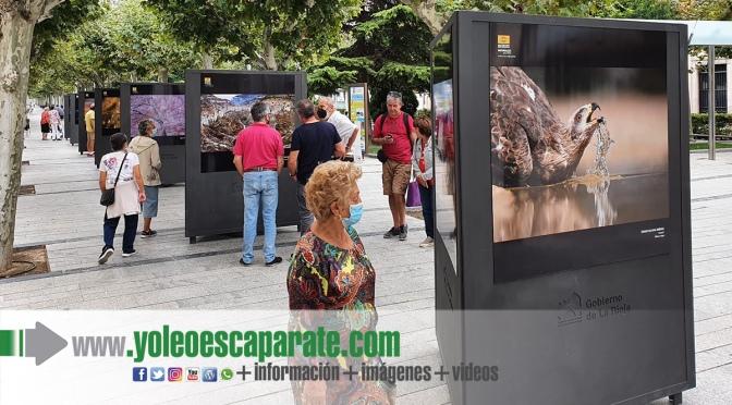 "Exposición fotográfica del XIV concurso ""Naturaleza de La Rioja"" en Calahorra"