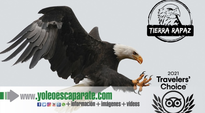 Tierra Rapaz, premio Travellers' Choice 2021 de Tripadvisor
