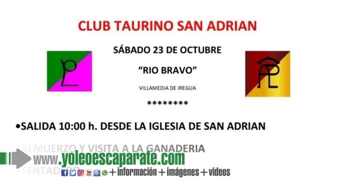 Fiesta campera  del Club Taurino de San Adrián